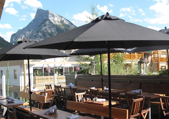 the bison banff canada pet friendly restaurant